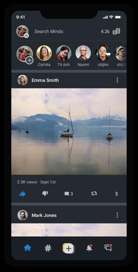 Minds Newsfeed - iOS